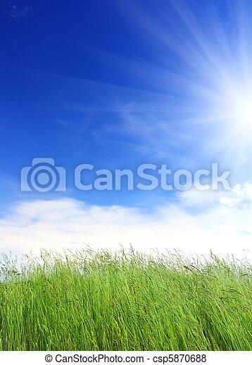 green grass under blue sky - csp5870688