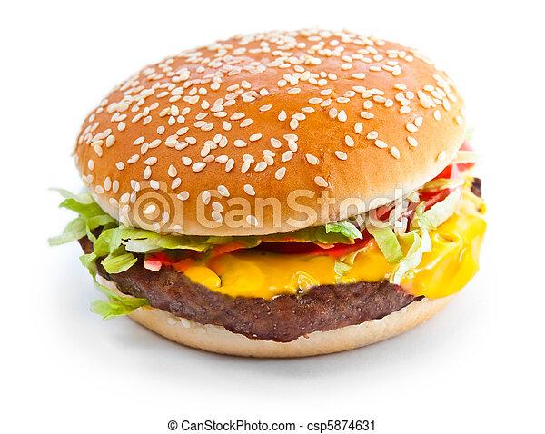 Hamburger closeup photo isolated - csp5874631