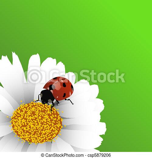 Spring background - csp5879206