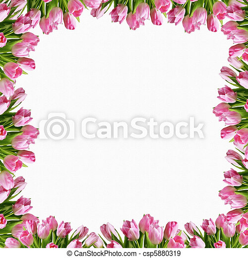 Beautiful colorful tulip frame - csp5880319