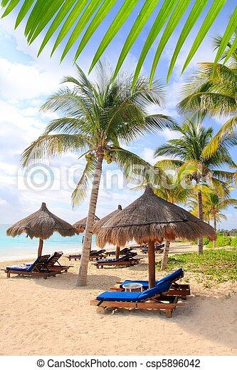Mayan Riviera beach palm trees sunroof Caribbean - csp5896042