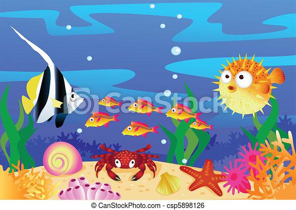 Sea life - csp5898126