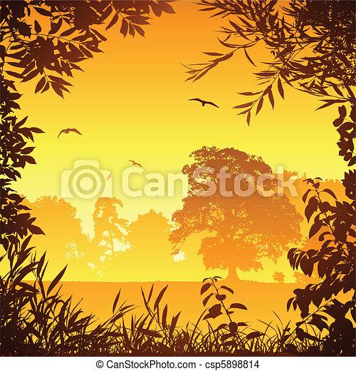 Meadow Landscape - csp5898814