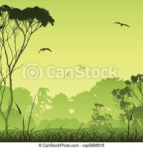 Meadow Landscape - csp5898818