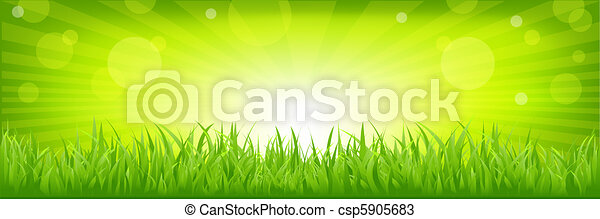 Grass With Green Background - csp5905683