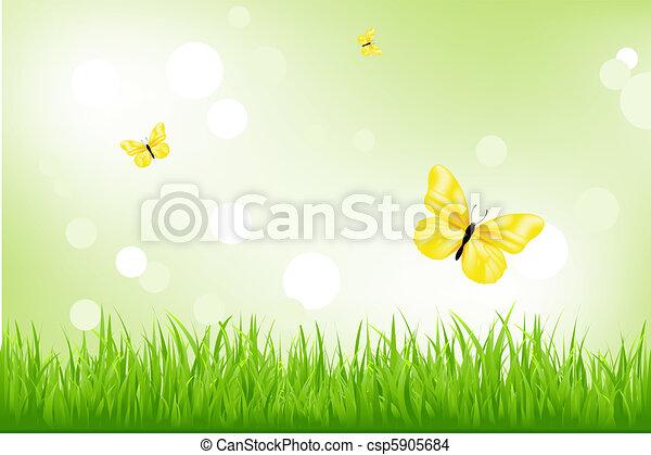 Green Grass And Yellow Butterflies - csp5905684