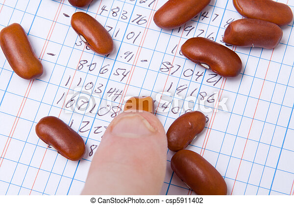 Finger Tip Kidney Beans on Ledger Book Accounting - csp5911402