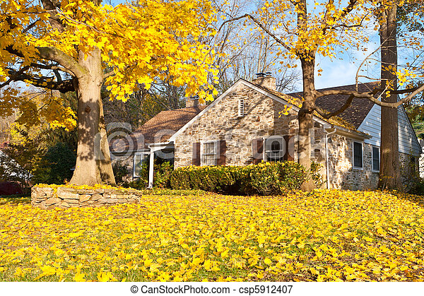 House Philadelphia Yellow Fall Autumn Leaves Tree - csp5912407
