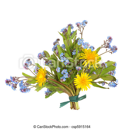 Spring Wildflower Posy - csp5915164