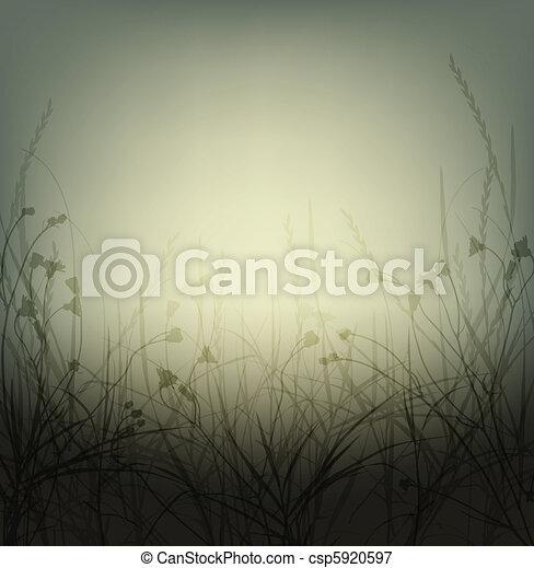wild weeds - csp5920597