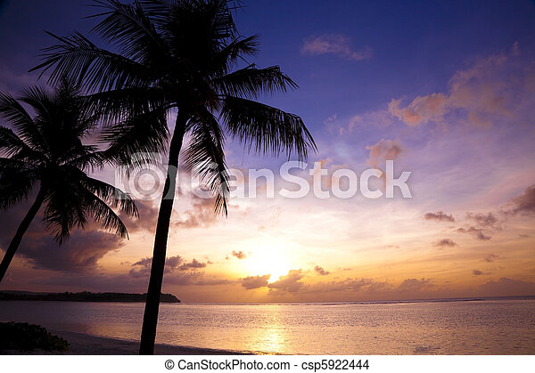 Beautiful sunset on the tropic beach and coconut palms - csp5922444