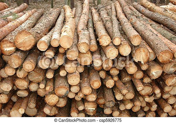 Timber - csp5926775
