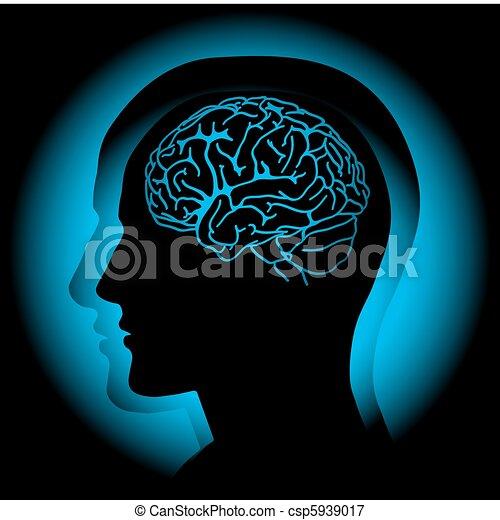 Brain - csp5939017