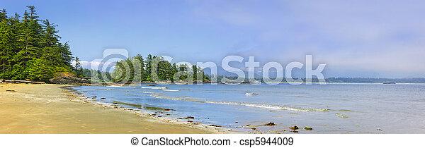 Coast of Pacific ocean, Vancouver Island, Canada - csp5944009