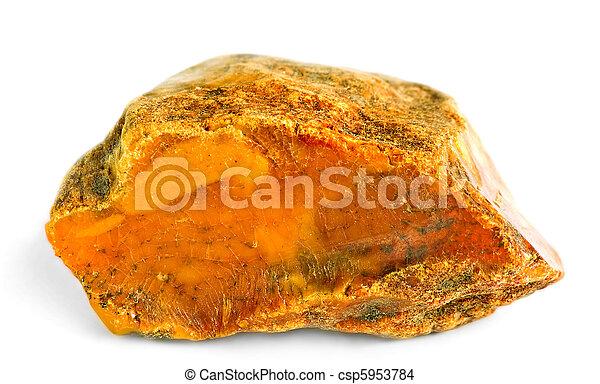 the amber - csp5953784