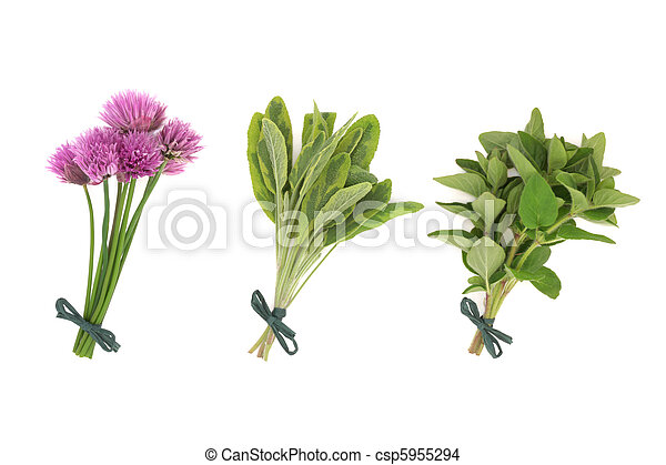 Chives, Sage and Oregano Herbs - csp5955294