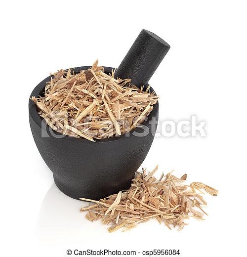 Ginseng Herb  - csp5956084