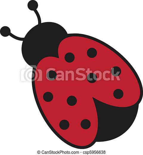 Ladybug - csp5956638
