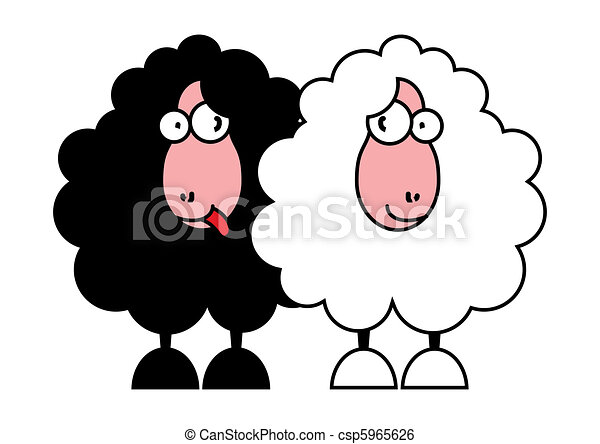 funny black and white sheeps - csp5965626