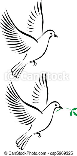 flight of dove - csp5969325