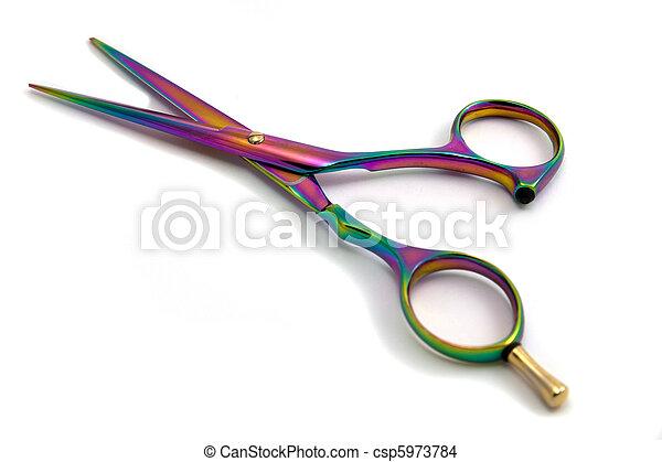 hairdressing scissors - csp5973784