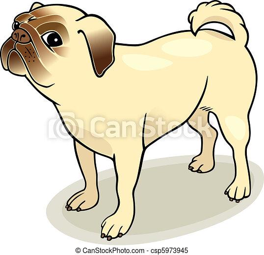 purebred pug - csp5973945