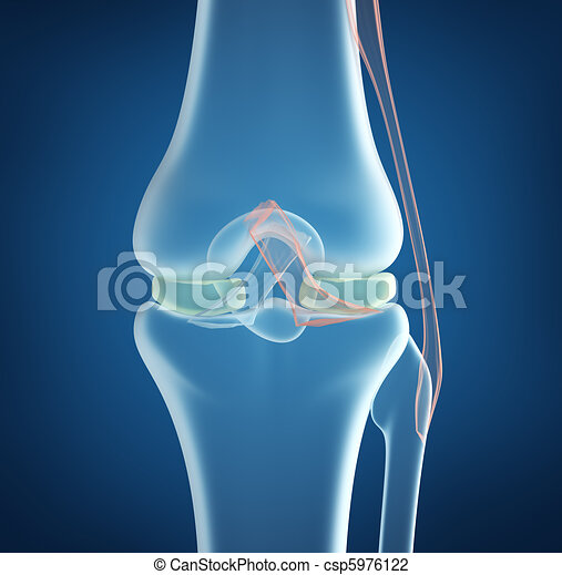 X-ray concept of knee joint closeup - csp5976122