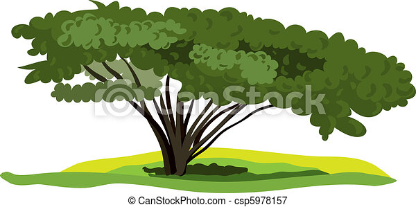 vector spreading tree on a white background - csp5978157