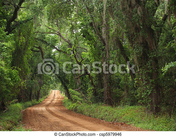 Red Clay Canopied Country Road - csp5979946