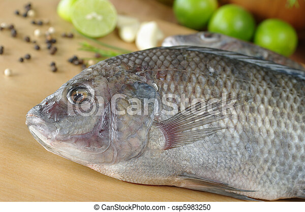 Stock photography of raw fish called tilapia surrounded by for Fish seasoning for tilapia