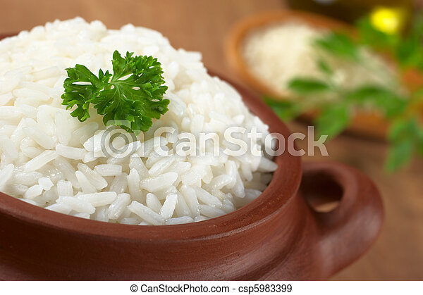Cooked white rice garnished with parsley in a rustic bowl (Selective Focus, Focus on the parsley and the rice around) - csp5983399