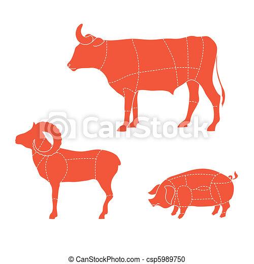 cuts-cow-mutton-pig - csp5989750