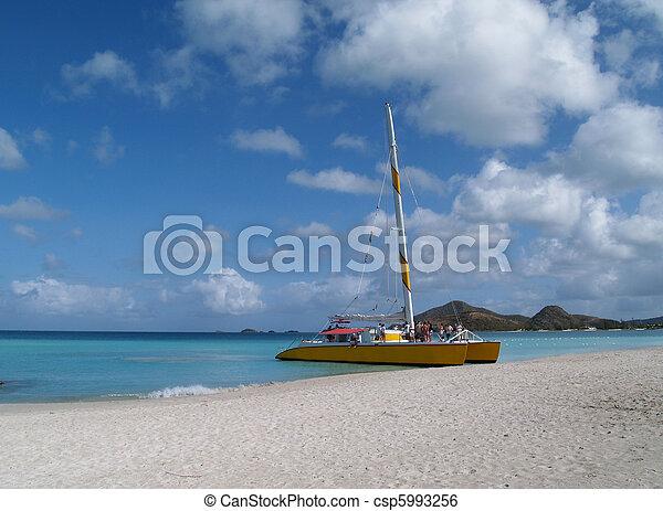 Catamaran on Jolly Beach, Antigua - csp5993256