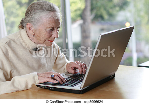 Elderly lady typing on laptop. Shallow DOF. - csp5996624