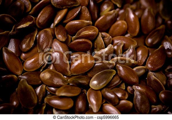 Flax Seeds Close-Up. - csp5996665