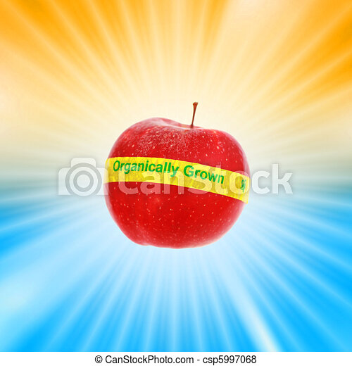 Ripe red organic apple over shiny burst background. Shallow DOF, focus on organic label. - csp5997068