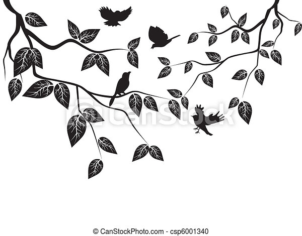 leaves and birds - csp6001340