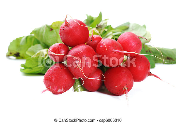 蔬菜 - csp6006810