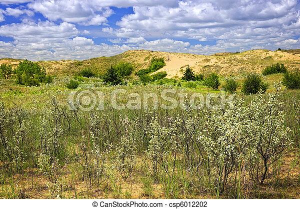 Sand dunes in Manitoba - csp6012202