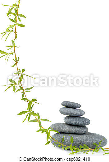 Branch of a tree of a willow and pebble - csp6021410
