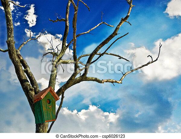 Bird House Vacancy - csp6026123