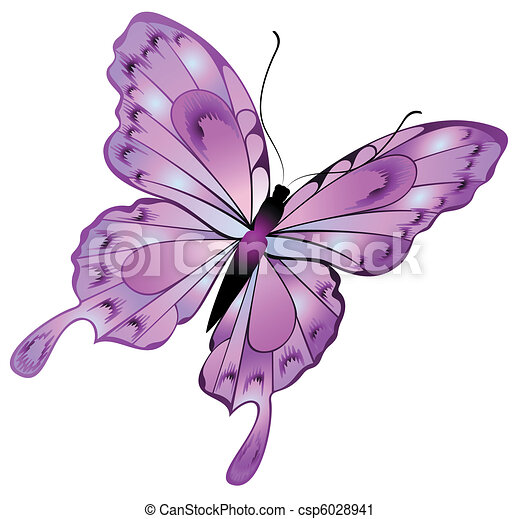 Beautiful butterfly - csp6028941