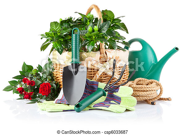 garden equipment with green plants and flowers - csp6033687
