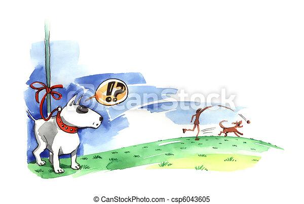 Bull terrier on the leash - csp6043605