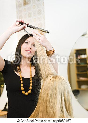 Hairdresser in action - csp6052467