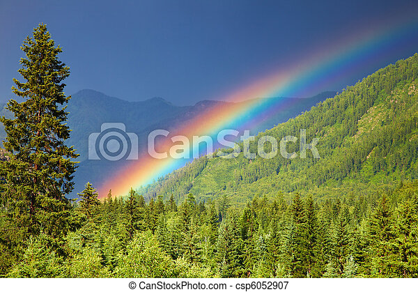 Rainbow over forest - csp6052907