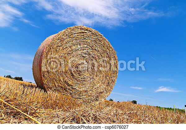 Agriculture. Box with straw bales - csp6076027