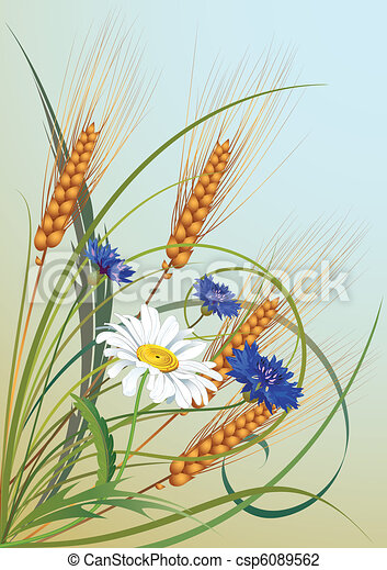 flowers and ears of wheat - csp6089562