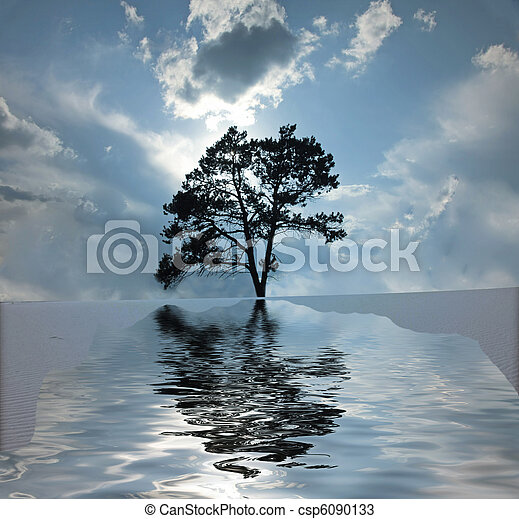 Desert Water - csp6090133