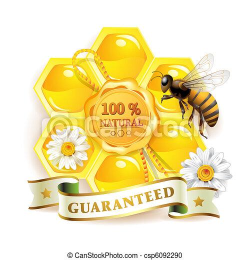 Bee with honeycombs - csp6092290